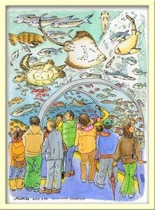 20060226shinagawaaquariumt_1