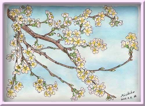 吉野桜の枝